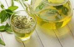 Tikrino žaliosios arbatos poveikį smegenims: rezultatai – daug žadantys