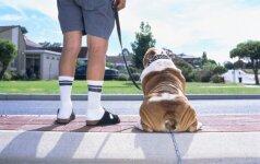 Vyrų stilius vasarą: pamirškite kojines ir sandalus