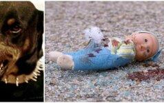 Po šuns sudraskyto kūdikio tragedijos prabilo kinologai – kaltas šeimininkas