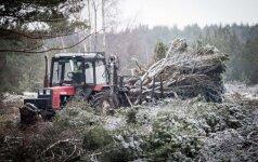 Kova su miško vagimis: priemonė, kuri parklupdo ir pačius gudriausius