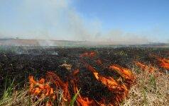 Su žole sudegino pusę milijono litų
