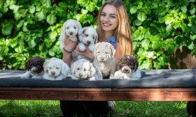 Šunų veisėja Julia – apie tai, kuo karantino laikotarpis ypatingas šunų šeimininkams