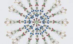 Gėlių mandalos