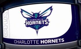 """Kai geluonis sminga tiesiai į taikinį: dešimt gražiausių """"Hornets"""" sezono epizodų"""
