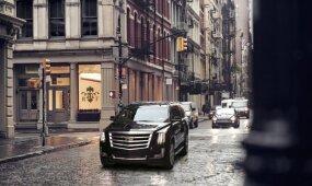 """Ulevičius: Palangoje sustabdytas """"Cadillac"""" – ne Karbauskio"""