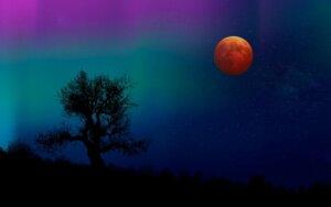 Mėnulio užtemimas. Santykių tvirtumo išbandymo laikas