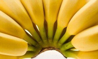 Bananai, vaisiai
