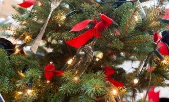 Kalėdų eglutės tradicija: nuo ko viskas prasidėjo?