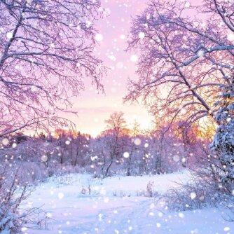 Astrologinė prognozė vasario 18-ajai