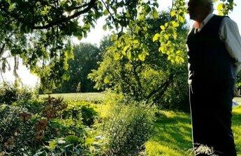 """""""Garden Style"""": garsus latvių selekcininkas atskleidė gudrybę, kaip auginti tulpes be persodinimų"""