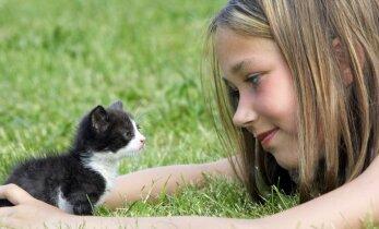 Kačiukas namuose: ko nepamiršti, kad naujas augintinis būtų sveikas ir žvalus