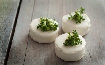Baltas naminis sūris