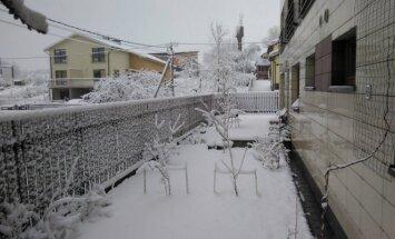Sniegas per Velykas