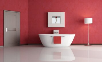 vonios kambarys. Black Bedroom Furniture Sets. Home Design Ideas