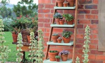 Kūrybiškas sprendimas: gėlių kopėčios