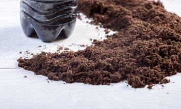 Kavos tirščiai