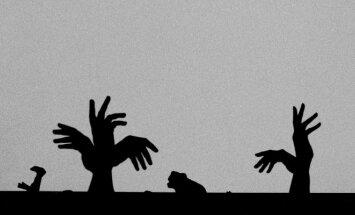 Rankų šešėlių teatras