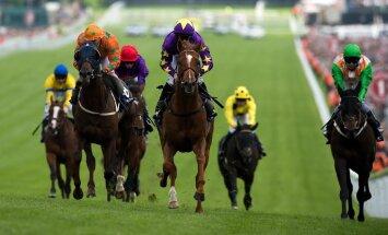 Žirgų lenktynės