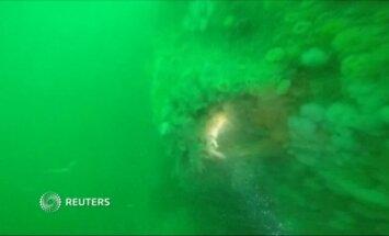 Prie Belgijos krantų rastas Pirmo pasaulinio karo laikų vokiečių povandeninis laivas