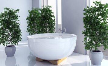 Gudrybė, kuri pavers jūsų vonią balta ir spindinčia