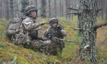 Lithuanian ground forces