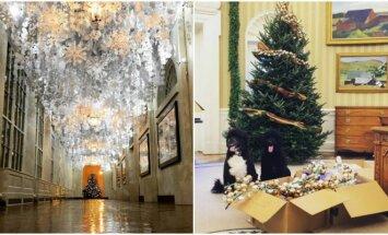 JAV prezidento augintiniai džiaugiasi Kalėdų egle