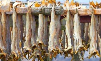 Džiovinta žuvis