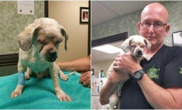 Daug šunų auginančio pareigūno namuose atsirado vietos ir aklam šuneliui Barkley.