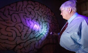 Iššifruoti smegenis