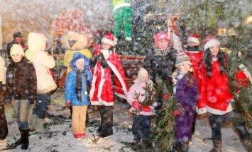 Šventė Lik sveika, Kalėdų eglute