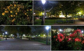 Stokholme esantis Karališkasis sodas