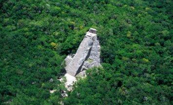 Majų miesto Kobos griuvėsiai Jukatano pusiasalio džiunglėse