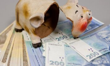 Viltis Lietuvai: paskaičiavo, kad iš ES gali gauti dešimtis milijonų litų