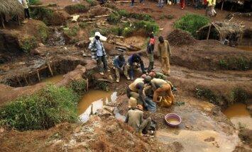 Kongo aukso kasėjai