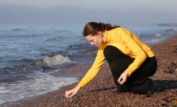 Looking for the Baltic amber