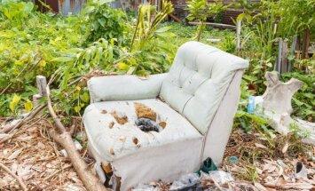 """Konkurso """"Mano baisiausia sofa"""" <span style=""""color: #ff0000;"""">nugalėtojas</span>"""