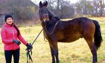 A. Girdenienė su žirgu