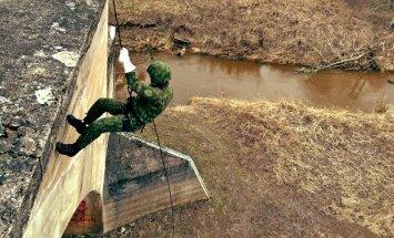 D. Toleikis kariuomenėje