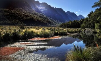 Naujoji Zelandija