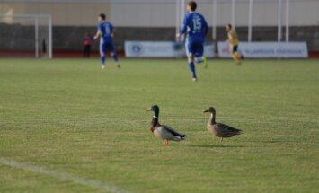 Lietuvos futbolo A lyga / Foto: altantas.lt