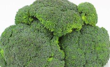 Agronomės patarimai, kaip sulaukti didelio brokolių derliaus