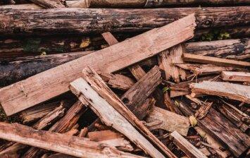 Medienos puvimas: kaip jį sustabdyti?