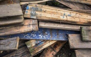 Ką reikia žinoti apie medienos puvimą?