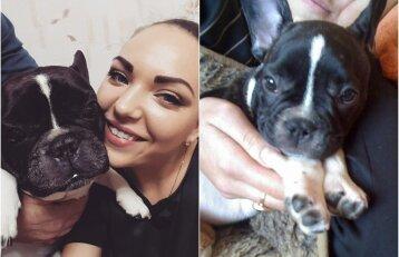 Perspėja gyvūnų šeimininkus: po vizito pas veterinarijos gydytoją – staigi šuns netektis