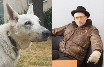 Tragiška baigtis: garsaus dailininko Cicėno paliktas šuo neišgyveno