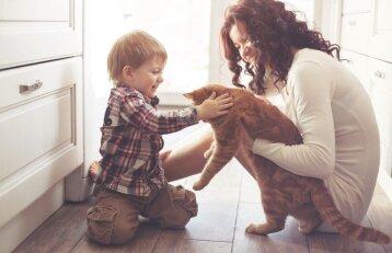 """Konkursas """"Mano katė 2018"""": mainais už nuotraukas – prizai"""