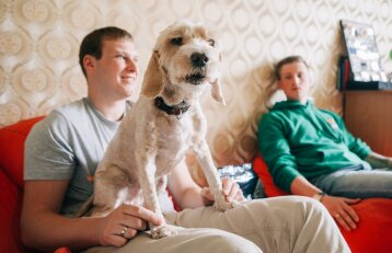 """Šunų elgesio ekspertas pataria: kokiais atvejais teisinga <span style=""""color: #c00000;"""">naudoti elektrinį antkaklį</span> šuniui"""