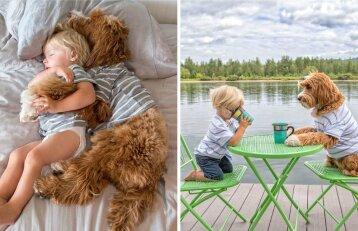Širdį verianti šuns ir vaiko draugystė: jų neišskiria niekas