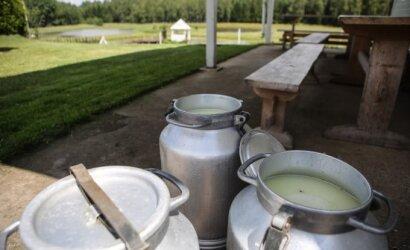 Retas žino, kokia sunkia liga galima užsikrėsti geriant pieną: kokio šiuo metų laiku geriau negerti?