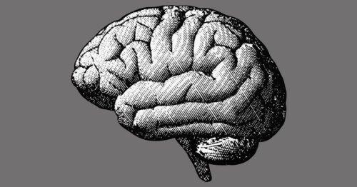 Šie mokslininkai bando sukurti galingus kompiuterius, įkvėptus mūsų smegenų